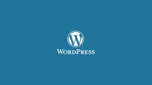 وردپرس | wordpress